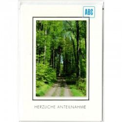 Trauerkarte ruhiger Waldweg