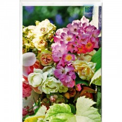 Blankokarte Rosen Wildrosen
